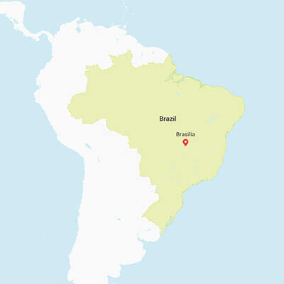 Business research projects in Brazil