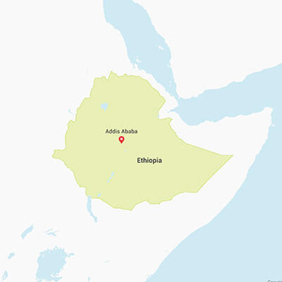 Business research projects in Ethiopia