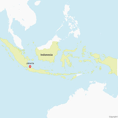 Business research projects in Indonesia