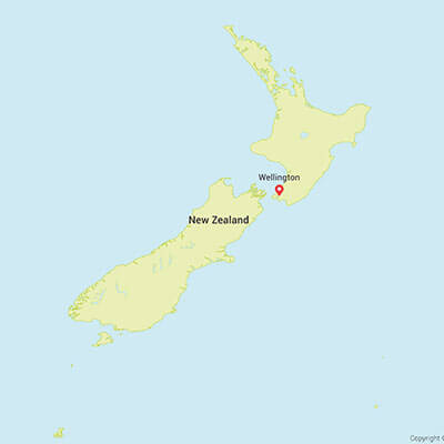 Business research projects in New-Zealand