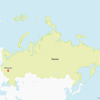 Business research projects in Russia