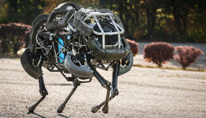 Bio-inspired Robotic Legs