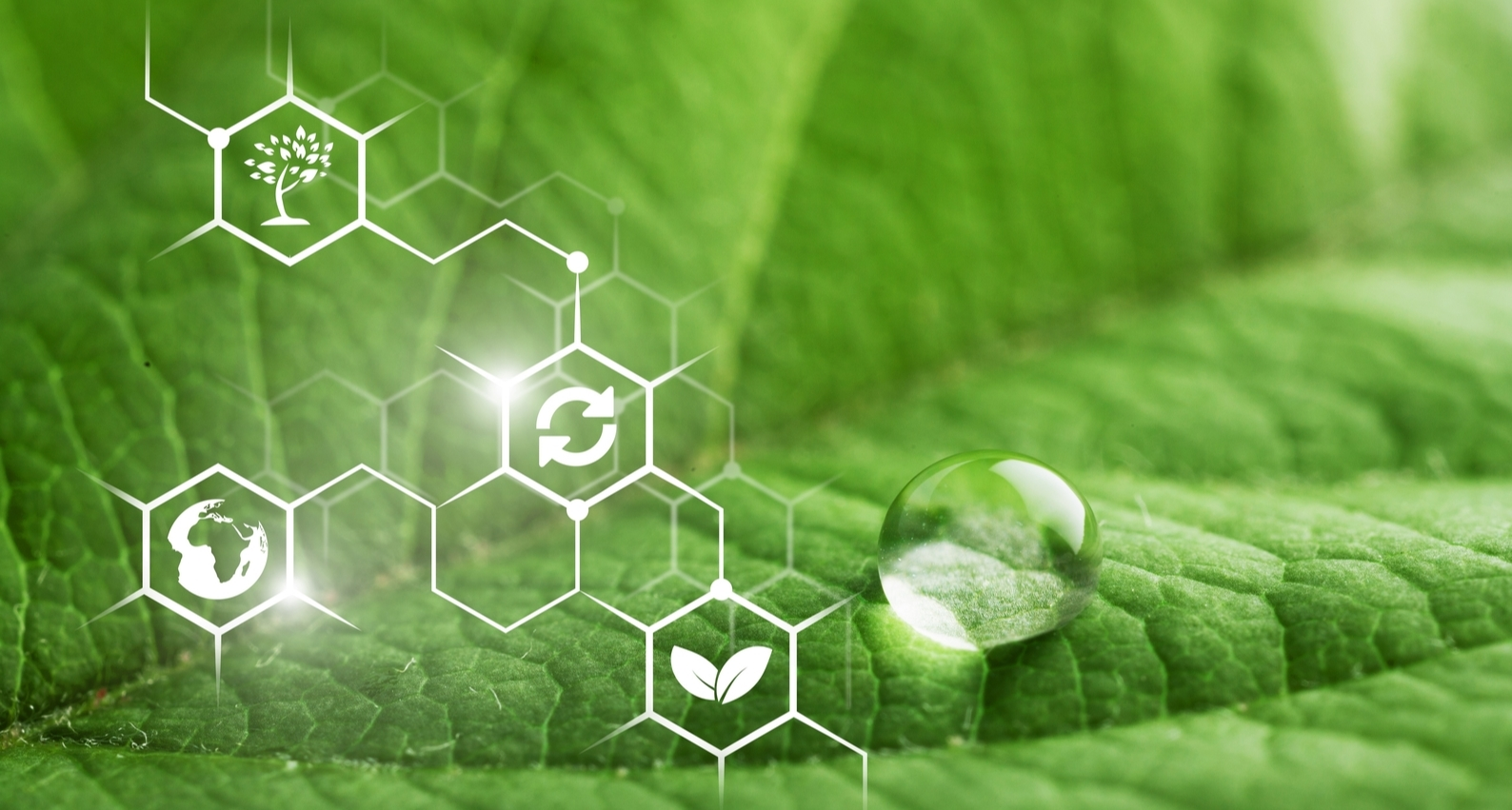 Sustainable Chemistry is rapidly becoming more popular