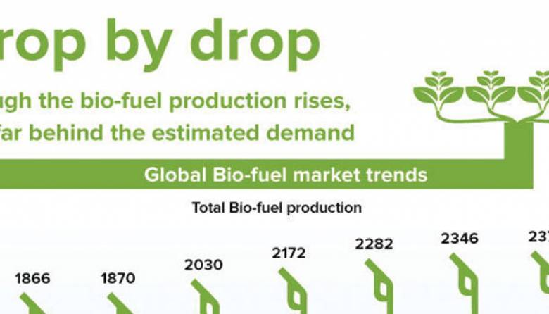 Global Bio-Fuel Production